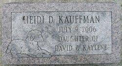 Heidi D Kauffman