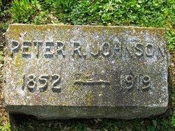 Peter R Johnson