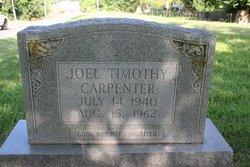 Joel Timothy Carpenter