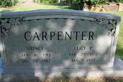 Lucy P Carpenter