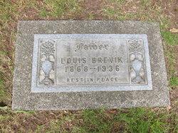 Louis Brevik