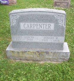 Violet Delight <I>Spencer</I> Carpenter