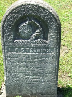 L F Stebbins