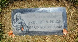 Robert A Poush
