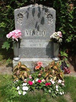 Angelo P Veneto