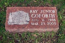 Ray Junior Goforth
