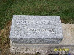 David B Shessler