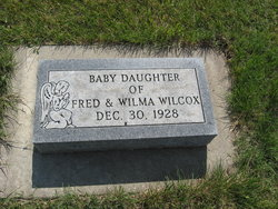 Baby Daughter Wilcox
