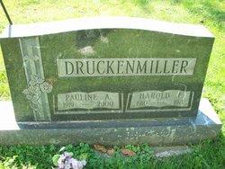Pauline A <I>Sawyer</I> Druckenmiller