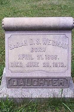 Sarah D S Wegman