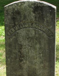 Permelia W. <I>Whitcomb</I> Holbrook