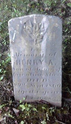 Henry Afred Shea