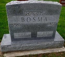 Laura <I>Torke</I> Bosma