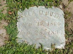 Ella D. Rush