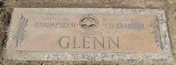 David M Glenn