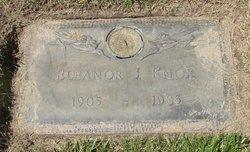 Eleanor J Knox