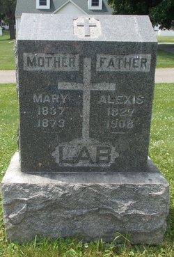 Mary <I>Henry</I> Lab