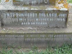 James Dunwoody Bulloch Jr.