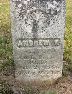 Andrew F. Fryar