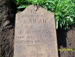 Sarah <I>King</I> Carrell