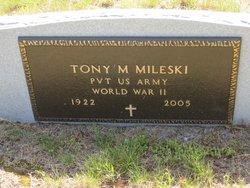 Anthony M Mileski