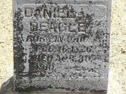Daniel Beagle
