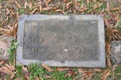 Wilson Rice