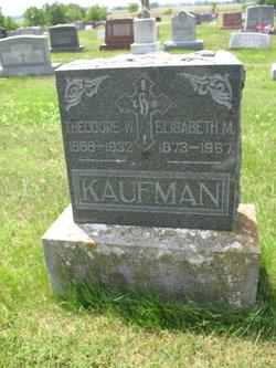 Theodore William Kaufmann