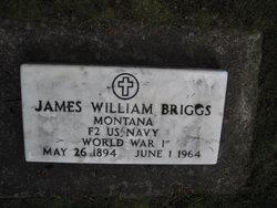 James William Briggs