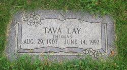 Tava Lay