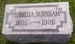 Permelia Ann <I>Drennen</I> Burnham