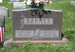 Benjamin H Barnes