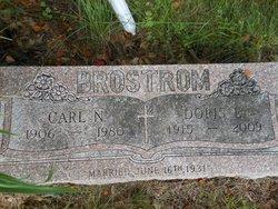 Carl Brostrom