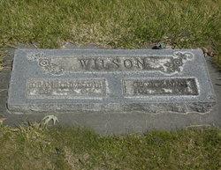 Deane Christine <I>Green</I> Wilson