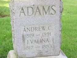 Andrew Clark Adams
