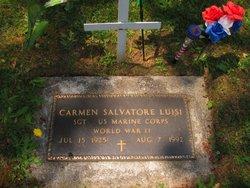 Carmen Salvatore Luisi