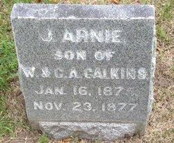 John Arnie Calkins