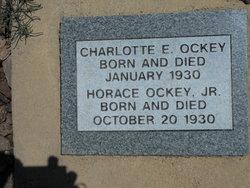 Horace Ockey, Jr