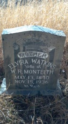 Elvira Watkins