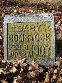 Bertha Helen Comstock