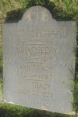 Gregory Analem Seery