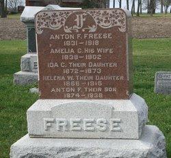 Amelia C Freese