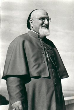 Cardinal Pierre Paul Méouchi