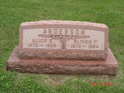 Alice Eliza <I>Ridley</I> Anderson