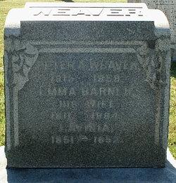 Peter Adam Weaver