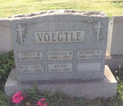 Rose <I>Veogtle</I> Ulrich