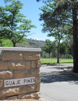 Guaje Pines Cemetery