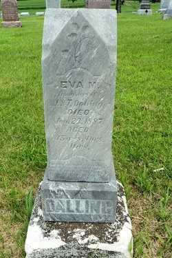 Eva M Dalling