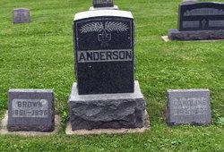 """Augustinus Bruun """"Brown"""" Anderson"""