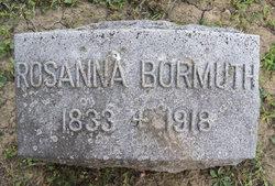 Rosanna <I>Kurtz</I> Bormuth